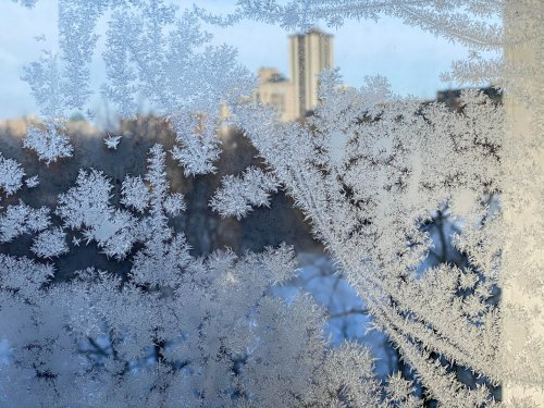 Frosty windows overlooking the Assiniboine River.